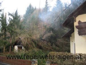 Sturmschaden Pilz 2007